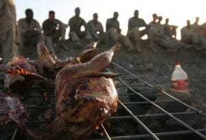 Marines from Combat Logistics Battalion 6, 1st Marine Logistics Group (Forward) chat about the day's events as their freshly butchered chickens roast atop their makeshift grill, May 10. Following a combat logistics patrol from Forward Operating Base Edinburgh, the Marines spent the afternoon relaxing and interacting with local villagers, one of whom sold them several chickens and fresh vegetables – a welcomed change of pace to another Meal, Ready-to-Eat for dinner.