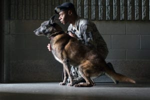 Staff Sgt. Christopher Bennett, 673rd Security Forces Squadron military working dog handler, works with Kimba, a Belgian Malinois, at one of the kennels at Joint Base Elmendorf-Richardson, Alaska, Sept. 11, 2018. Kimba is approaching retirement after 10 years of military service. (U.S. Air Force photo by Justin Connaher)